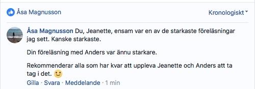Åsa Magnuson om K el K