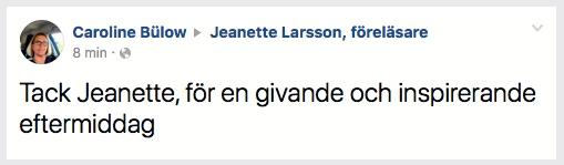 2018-02-08, Malmö Stad, Avdelningen för ordinärt boende i Malmö. FB-kommentar från en åhörare.